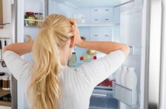 Почему гудит холодильник и что делать