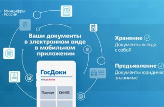 Паспорт и права больше не нужны: в июне выходит приложение на смартфон, которое их заменит