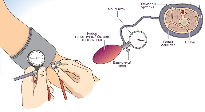 Как мерить давление механическим тонометром